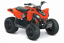Can-Am DS 90 STD model 2019